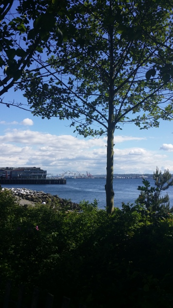 Looking south to the Port of Seattle