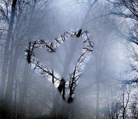 february_heart